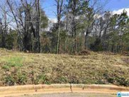5862 Shades Run Ln Unit Lot #6, Hoover image