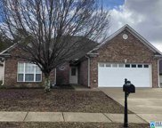 175 Oak Leaf Cir, Pell City image
