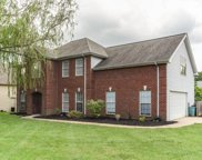 4002 Amber Way, Spring Hill image