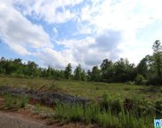 Serenity Ln Unit 53 Acres, Sycamore image