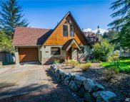 10411 Narrows Dr, Anderson Island image