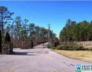 1.9 Acres Russell Chapel Ln Unit 121, Sylacauga image
