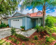 1312 Dew Bloom Road, Valrico image