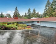 16215 25th Ave SW, Burien image