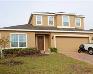 1709 Bonser Road, Minneola image