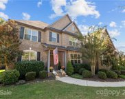 8917 Red Barone  Place, Waxhaw image