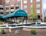 111 Woodland Avenue Unit 305, Lexington image