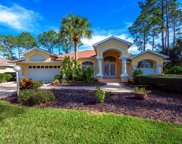 53 Woodhollow Lane, Palm Coast image
