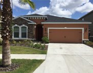 11157 Spring Point Circle, Riverview image