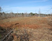 Lot 1 Hwy 79, Lincolnton image