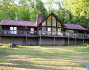 2877 Murphrees Valley Rd, Springville image