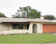 11701 Twin Maple Place, Tampa image