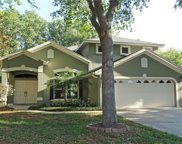 17421 Woodfair Drive, Clermont image