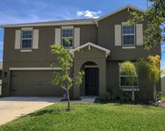 10312 Boggy Moss Drive, Riverview image