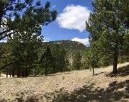 Tract Cimmaron Pay Dirt Pass, Custer image