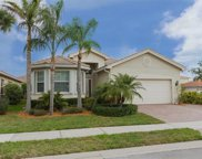10407 Spruce Pine Ct, Fort Myers image