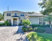 1501 Lawson Palm Court, Apopka image