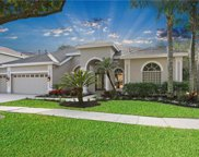 8201 Nature Cove Way, Tampa image