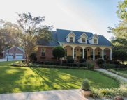 1541 Mineral Springs Rd, Pell City image