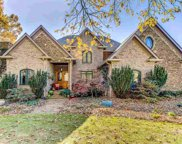 105 Chestnut Springs Way, Williamston image