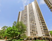 1460 North Sandburg Terrace Unit 1403, Chicago image