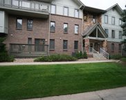 6435 South Dayton Street Unit 101, Englewood image