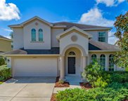 27420 Silver Thatch Drive, Zephyrhills image