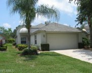 21126 Butchers Holler, Estero image