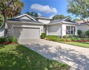17437 New Cross Circle, Lithia image