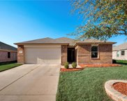 14717 Forest Hollow, Balch Springs image