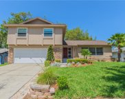 1007 Chokecherry Drive, Winter Springs image