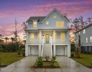 2354 Brackish Drive, Mount Pleasant image