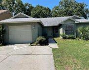 12722 Trowbridge Lane, Tampa image
