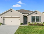 3646 Maidencain Street, Clermont image