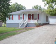 295 Pleasant Rd, Mount Olive image