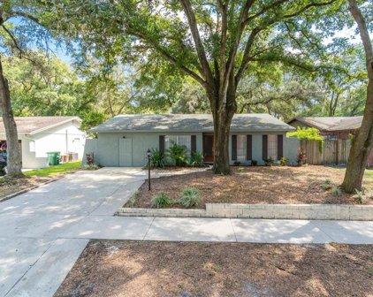 9627 Hidden Oaks Circle, Tampa