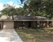 525 Flame Tree Drive, Apollo Beach image
