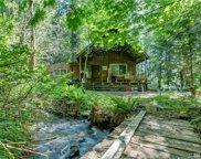 8974 Frost Creek Rd, Maple Falls image