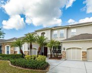 12009 Meridian Point Drive, Tampa image