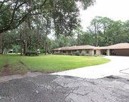11959 NATURES TRAIL RD, Jacksonville image