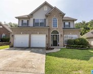 2406 Forest Lakes Ln, Chelsea image