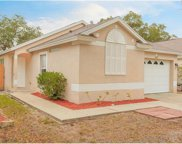 10312 Lakeside Vista Drive, Riverview image