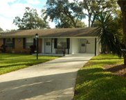 310 W Gardenia Drive, Orange City image