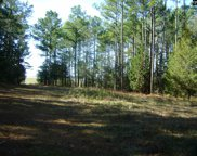 Lot D-1, Lot F State Hwy 215, Jenkinsville image