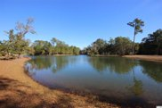 Lot 109 Woodstork Ln., Georgetown image