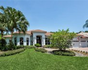 6660 Glen Arbor Way, Naples image