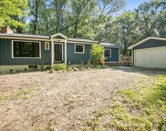 57243 Stoldt Road, Three Rivers image