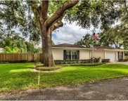 2780 Little Laurel Way, Mount Dora image