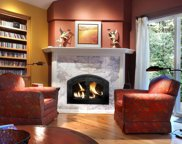 14375 Occidental Road, Sebastopol image