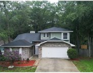915 Royal Oaks Drive, Apopka image
